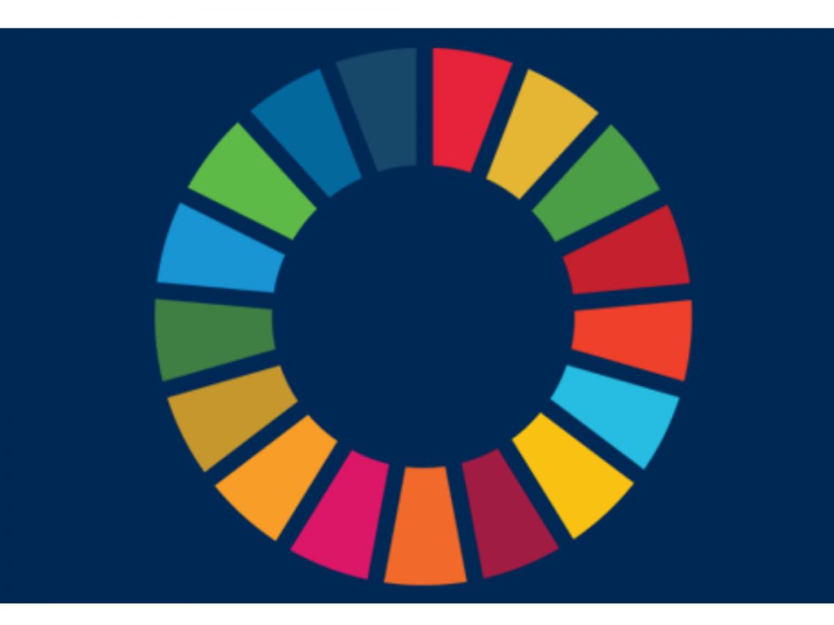 Agenda 2030: il percorso delle imprese